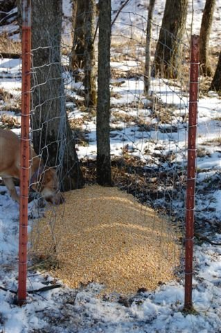 made plans gravity showthread vb homemade them feeder anyone feeders